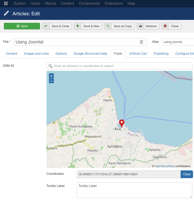 Advanced Custom Fields OpenStreetMap Usage