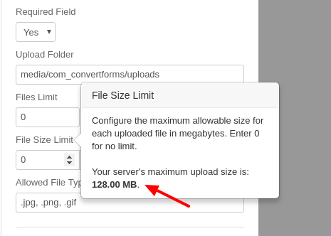 Set the maximum allowed file size in your Joomla! Form