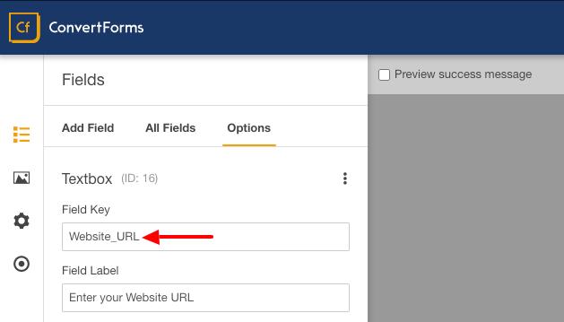 drip custom fields website url