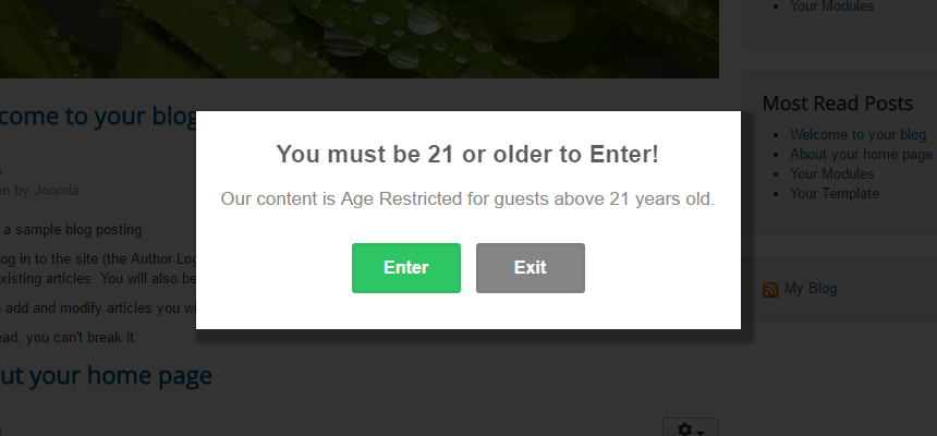 Create a Cookie Based Age Verification Popup